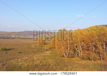 Beautiful autumn village landscape with trees and sky