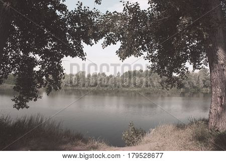 Beautiful summer landscape with river and trees