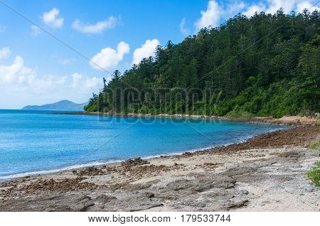 Beautiful Beach With Turquoise Blue Water And Forest On The Background