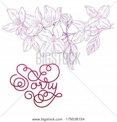 Holiday gift card with hand lettering Sorry and bloom silhouette. Vector illustration for your design