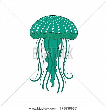 Green jellyfish on a white background  Green jellyfish on a white background