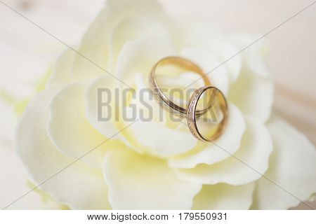 Wedding rings on a flower on a wood background