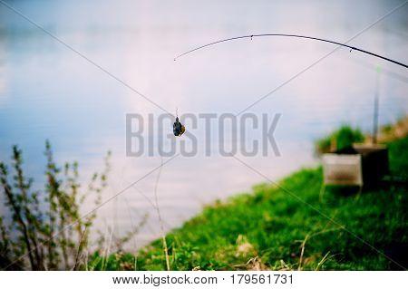 fishing tackle spinning riverside grass river Bank