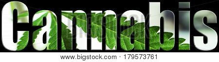 Cannabis Icon With Marijuana Leaf Inside Letters High Quality