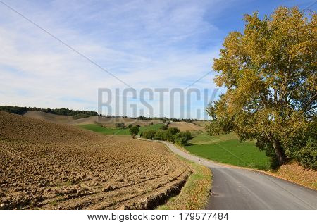 Beautiful tilled field with a winding road through the Tuscan countryside.