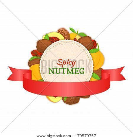 Round white frame composed of Nutmeg spice fruit and red ribbon. Vector card illustration. Nutmeg nuts frame, fruit in the shell, whole, shelled, leaves for packaging design of healthy food.