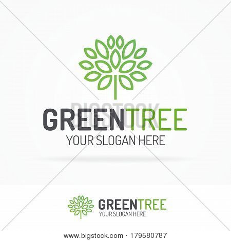Green tree logo set with leaves line style for use organic shop, ecology company, alternative medicine, green unity, nature firm, natural product, garden, farming, forest etc. Vector Illustration