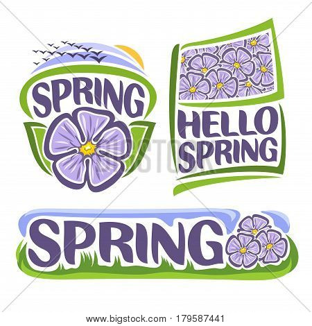 Vector logo of Spring Flowers: icon of lilac hibiscus, flock of birds on sunrise, flag with lavender floral background of sharon flower, title text: hello spring, design banner of meadow with grass.