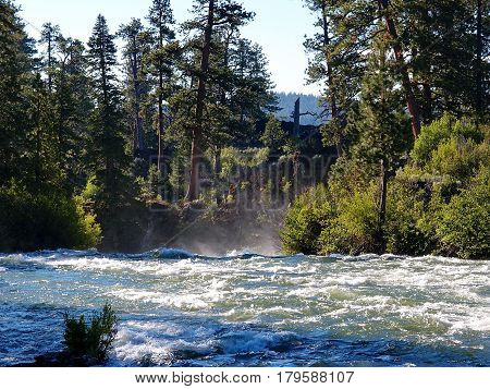 The Deschutes River in Central Oregon flows rapidly to the edge of Dillon Falls with mist as it flows over with Ponderosa trees and wild bushes on its banks on a sunny summer day.