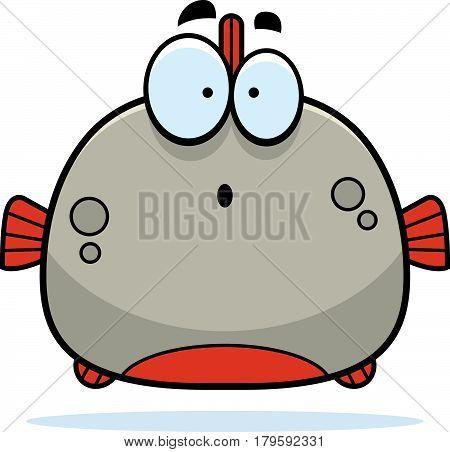 Surprised Little Piranha