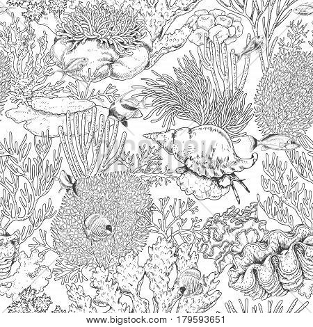 Hand drawn underwater natural elements. Seamless pattern with reef corals actinia clams and swimming fishes. Sea bottom monochrome texture. Black and white coloring page. Vector sketch.
