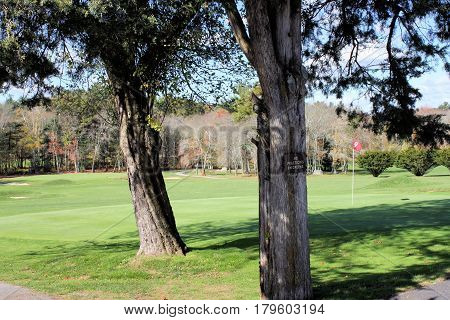 Tree lined ninth hole with sign tacked to tree warning players that practicing is not allowed on green.