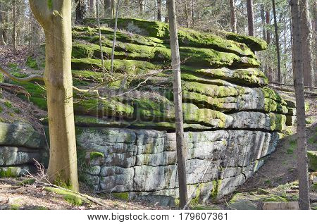 rock formation in the forest South Bohemia Czech Republic