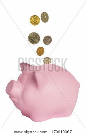Coins fall into a piggy bank of pink color