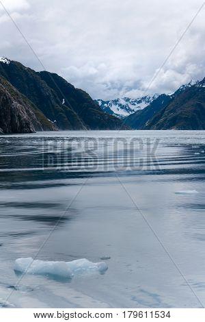 Chunks Of Ice Floating In Ocean Near Seward Alaska