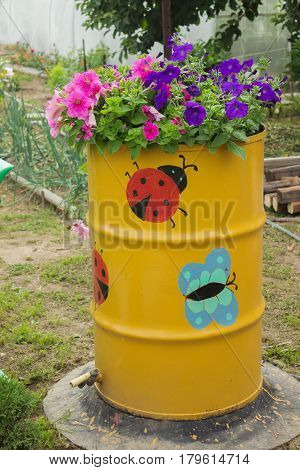 Flowers Blooming In The Old Barrel