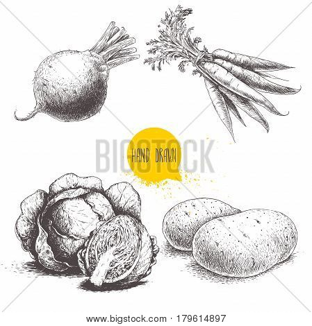 Hand drawn sketch style vegetables set. Cabbages beet root with leafs potatoes and bunch of carrots. Farm fresh food isolated on white background.