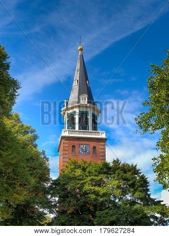Church Tower In Tree