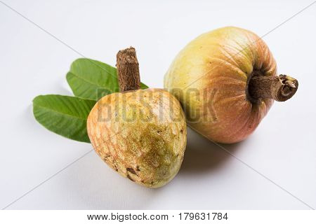 rare fruit from India names upon Lord Rama called Ramphal or Ram Phal or Ramfal or Ram fal also called as Annona reticulate or Soursop in english