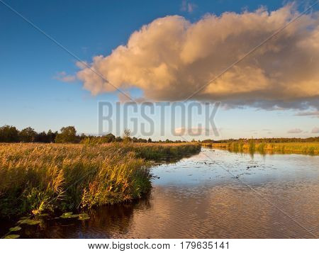 Marsh Country Netherlands