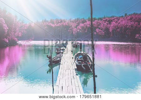 Natural background Boat nature Flowers sides of the river. Long Boat