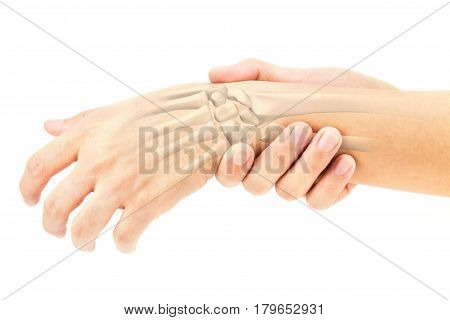wrist bones injury white background wrist pain