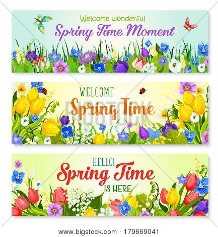 Spring Time holiday greeting banner with flowers. Welcome Spring seasonal quotes design. Blooming green fields and butterfly on meadow lawns of springtime tulips and snowdrops, daffodils or crocuses