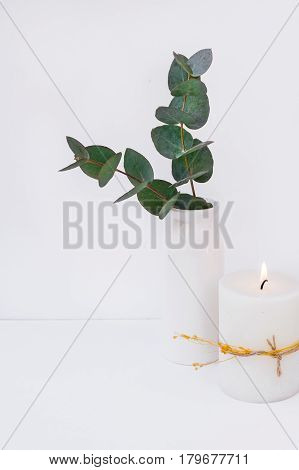 Branches of green silver dollar eucalyptus in ceramic vase burning candle on white background styled image interior design blogging social media