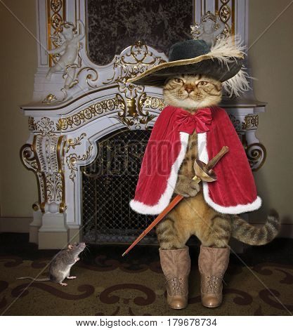 The real cat looks like a gallant musketeer. He and his friend rat are standing next to a nice fireplace.