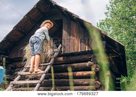 Boy puts the hay in hayloft .