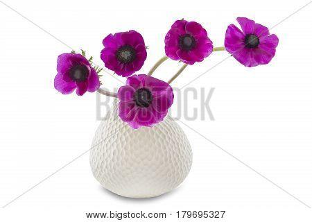Poppy anemones (Anemone Coronaria) in a vase on white background