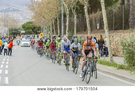 Barcelona Spain - March27 2016: The peloton including the Colombian cyclist Nairo Quintana of Movistar Team riding in the peloton on the road to the top of Montjuic in Bracelona Spain during Volta Ciclista a Catalunya on March 27 2016.