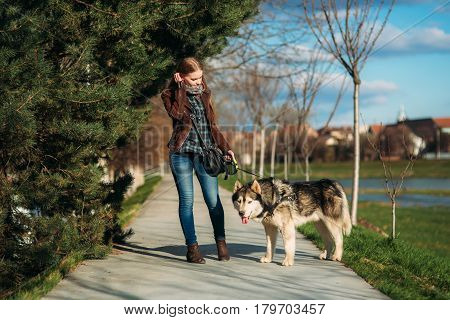 A girl is walking with a dog along the embankment. Beautiful Husky dog. The river. Spring.