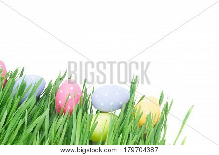 Easter eggs in grass close up isolated on white background