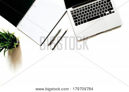 Modern minimalistic work place. White office desk table with laptop keyboard, pen, office plant. Top view with copy space, flat lay