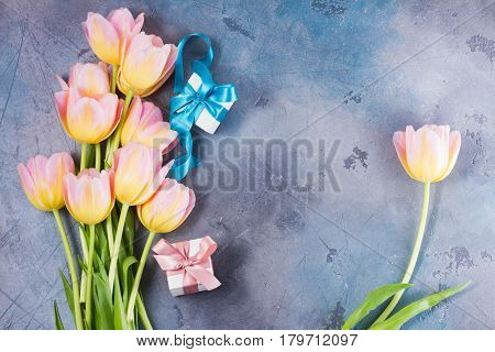 Pink and yellow fresh tulips with gift boxes frame on gray stone background