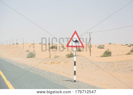 a road sign telling you to be aware of camels on this highway running through the desert