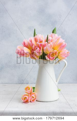 Bunch of fresh pink and yellow tulips in white vase on gray background