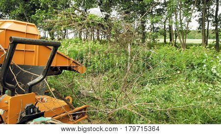 An excavator claw is in process of picking up the cut up tree branches. The forest is getting cleaned. Keeping the environment clean and fresh is the main focus.