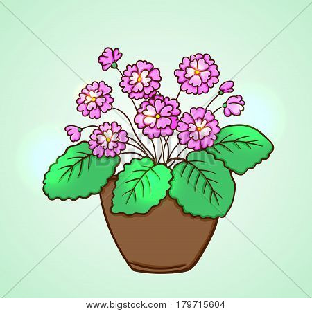 Blooming pink flowers in a flowerpot on a green background. Hand drawn vector illustration.
