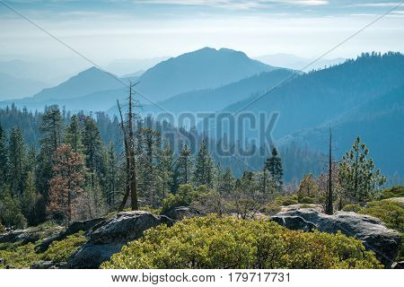 Landscape of Sequoia National park in spring with mountain peaks in haze