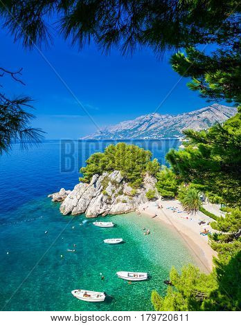 the small beautiful Podrace beach in Brela through pine trees Makarska Riviera Croatia