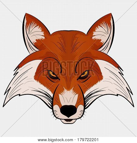 Angry Fox Head Mascot Vector Illustration isolated on white background