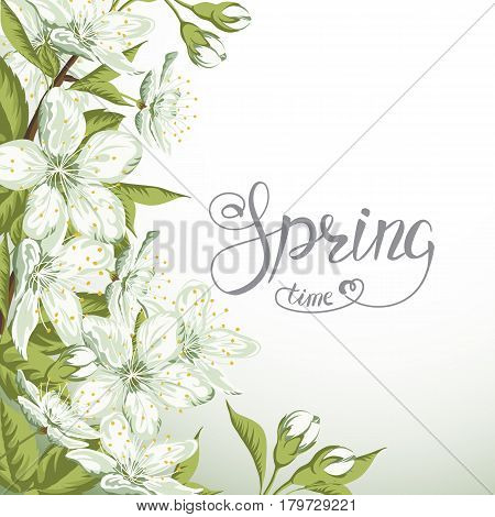 Blooming branch of sakura and Spring Time lettering on white background.Vector Illustration.