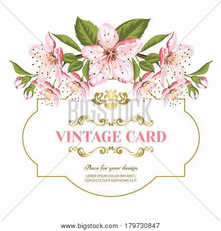 Invitation card of color sacura blossom flowers. Vintage floral invitation for spring or summer bridal shower. Frame card isolated over white background. Vector illustration.