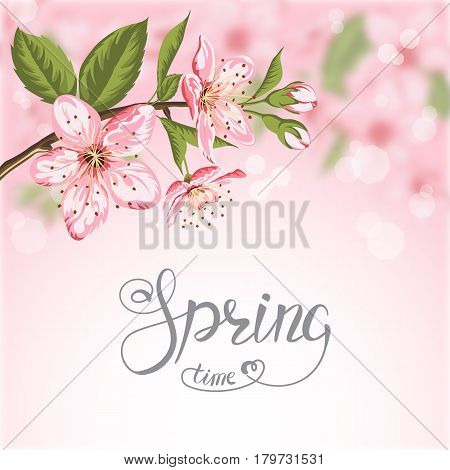 Blooming branch of sakura and Spring Time lettering on pink blurred background.Vector Illustration.