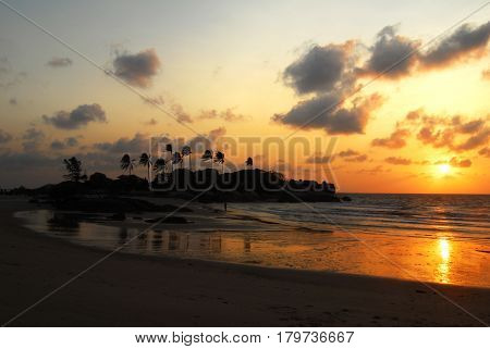 Palm tree silhouette at the beach during orange sunset and clouds in the sky at nightfall.