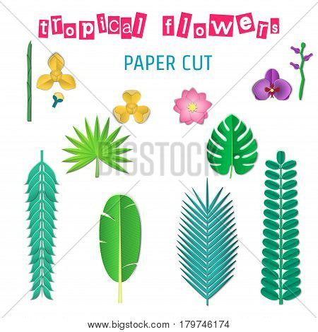 Vector Illustration of pop-up book for Design, Website, Background, Banner.Paper origami Elements. Cartoon Template