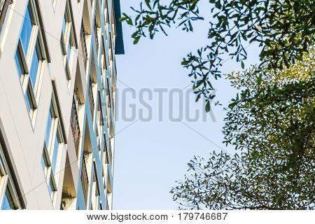 Condominium Building With Green Tree Leaves