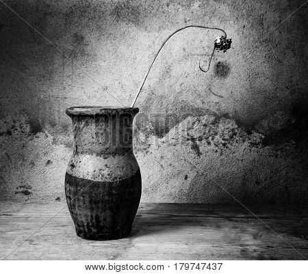 Black And White Still-life With An Old Jug And  Dry Plant